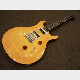 Paul Reed Smith(PRS) SE CUSTOM 24 N / VY
