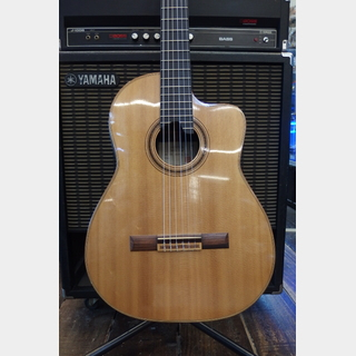 Hongoh Guitars 650s-c