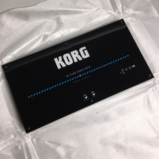 KORG WDT-1 / WALL DISPLAY TUNER