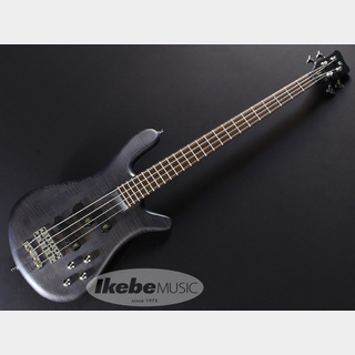 Warwick Teambuilt GPS Streamer StageI 4st(Nirvana Black)【アーリーサマー タイムセール 2020】