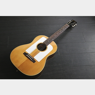 Gibson F-25 コレクター委託品