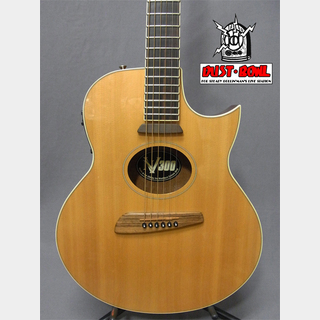 Washburn NV-30