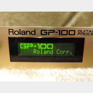 Roland GP-100 GUITAR PREAMP/PROCESSOR