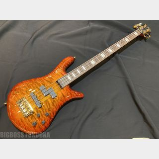 Spector EURO 4 LX RAS LAYER -Twilight Amber-