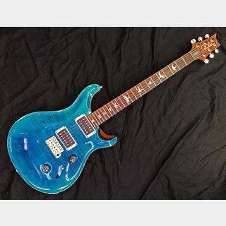 Paul Reed Smith(PRS) Custom24 2019 / BM PR