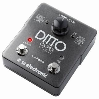 tc electronic Ditto X2 Looper ルーパー・ペダル
