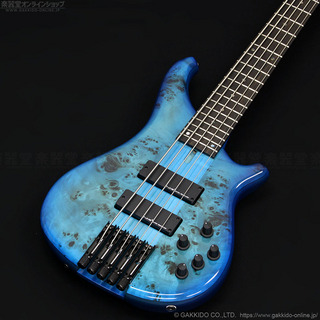Tune Zi-3-5 Headless [Burl Poplar Top / Alder Back] [Blue Burst]