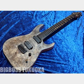 EDWARDS E-HR7-FX/BM  【Ash Black】