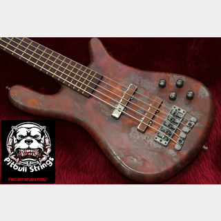 Warwick Custom Shop  Streamer LX 5st Rusty Model 4.28kg #G 157113 11