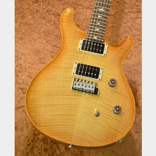 Paul Reed Smith(PRS) CE 24 10 Top ~Vintage Natural~