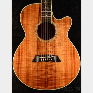 Takamine Custom Model 100CUSTOM (DMP100K N Style) ~2015USED~【美品中古!】【グラスフラワーインレイ】