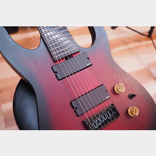 ESP Order Model 8-strings