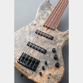 dragonfly SJ-5 CUSTOM -Buckeye Burl Top- 【NEW】【極杢】【軽量3.98kg】