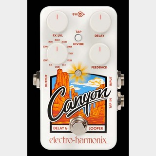 Electro-Harmonix CANYON Delay & Loopers