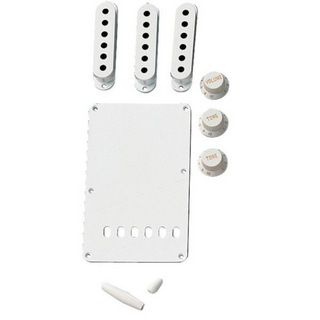 FenderVintage-Style Stratocaster Accessory Kit - Aged White エイジドホワイト アクセサリーキット