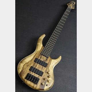 MTD535-24 -Flamed Sycamore Back / Mytle Burl 10 Top-【動画あり】【駅前店】