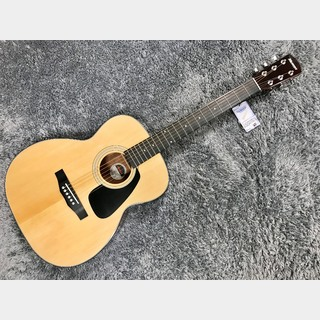Morris F-280 NAT (Natural) Performers Edition 【定番エントリーモデル】