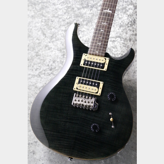 Paul Reed Smith(PRS) SE Custom 24 ~Grey Black~ #C72939 【3.41kg】【送料無料】