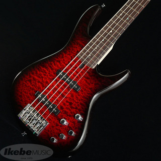 "T's Omni Bass 5/22 R/Alder ""Quilted Maple Top"" (Arctic Red)"