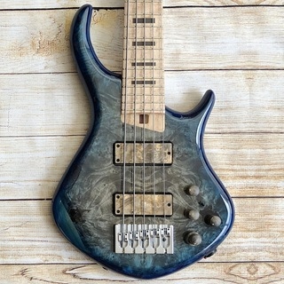 Warrior Dran Michael 5Strings Blue Burst
