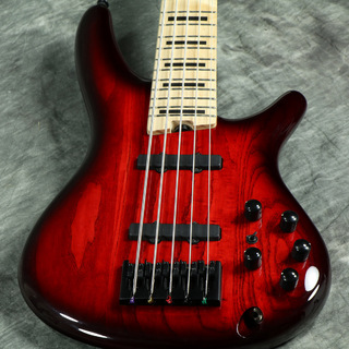 IbanezANB-205 Transparent Wine Red Burst 【WEBSHOP】