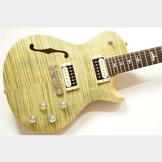 Paul Reed Smith(PRS) SE Zach Myers - Trampus Green