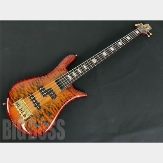 Spector EURO5 LX-PJ RAS LAYER -Twilight Amber- / RAISE A SUILEN LAYER MODEL