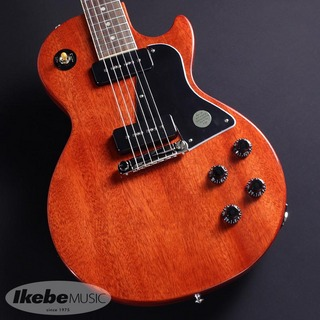 Gibson Les Paul Special (Vintage Cherry)
