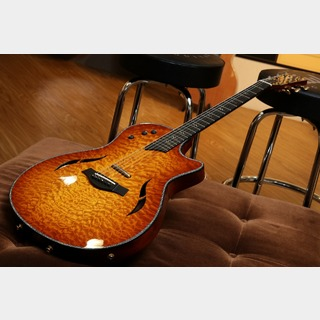 TaylorCustom15 T5 Quilt Maple Top / Amber (USED) 【スーパータイムセール!~7/10】