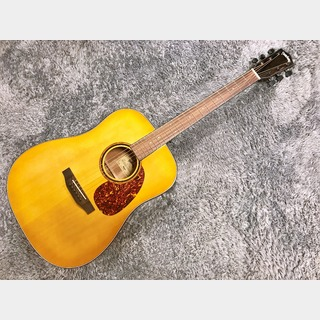 Headway HD-630 Honey Burst【限定特価】