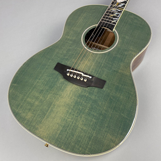 Takamine LTD2020 -Peace-  S/N 57100777