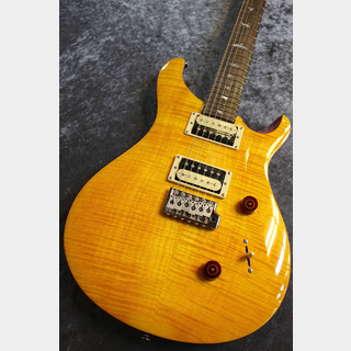 Paul Reed Smith(PRS) SE Custom24 Vintage Yellow #C01667 【入門者おススメ】【美杢個体】