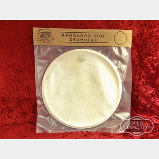 Kentville Drums KANGAROO HIDE DRUM HEAD MEDIUM 14インチ用【送料無料】