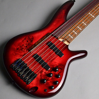 Ibanez SRAS7 - RSG (Raspberry Stained Burst Gloss) Ashula Bass【希少モデル】【ミーナ町田店】