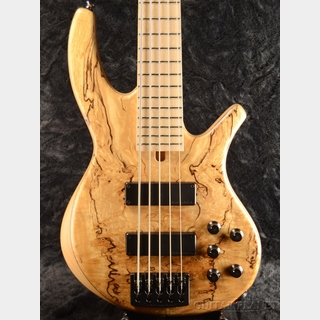 Overwater【新生活応援フェア!!】Progress Standard Bolt-on 5 -Spaleted English Alder/Red Alder-