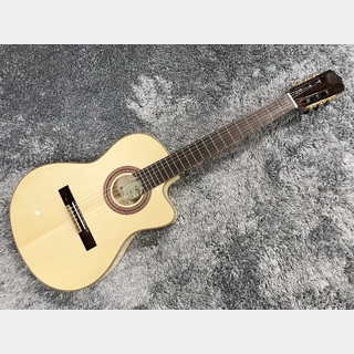ARIA A-48CE N (Natural) 【エレガット】