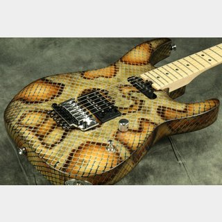 Charvel WARREN DEMARTINI SIGNATURE SNAKE PRO MOD 【WEBSHOP】