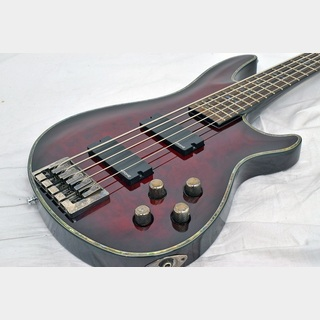 SCHECTER AD-C-5-HR Hellraiser Black Cherry 【福岡パルコ店】