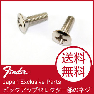 FenderFender Japan Exclusive Parts NO.7709503000 Screw for Switch 3x10mm 2pc ST NI JP フェンダー純正パーツ
